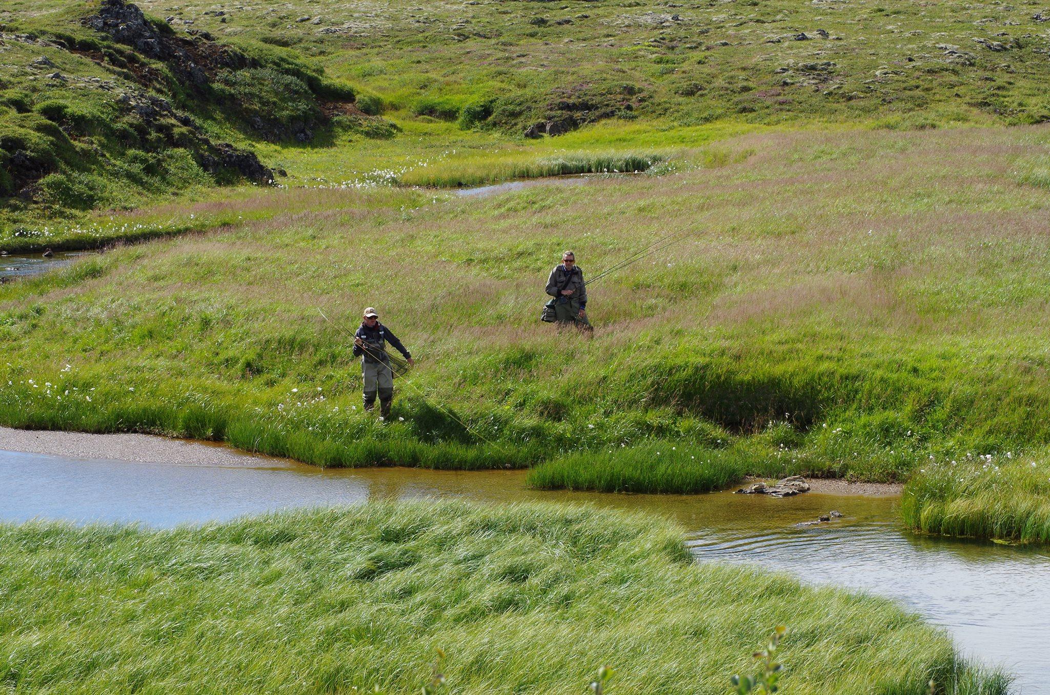 En Islande, deux hommes pêchent près d'un cours d'eau dans la plaine du renard polaire