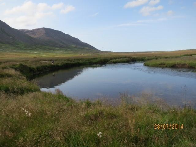 rivière aux ombles de mer en Islande